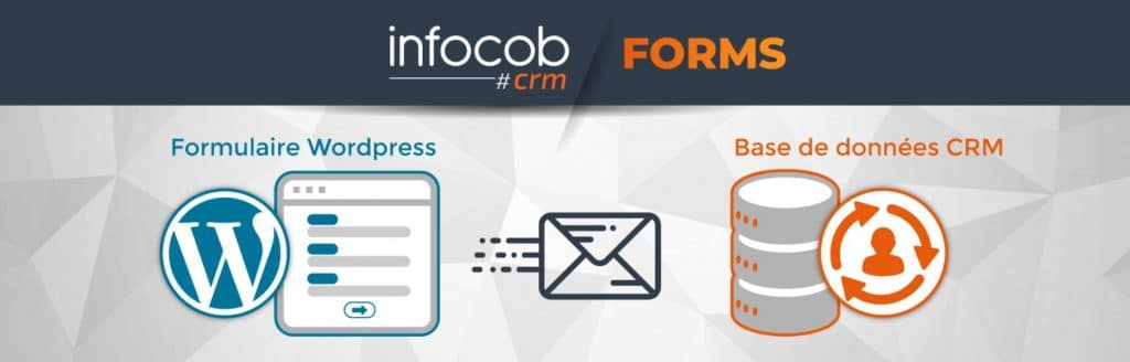 formulaire WordPress crm